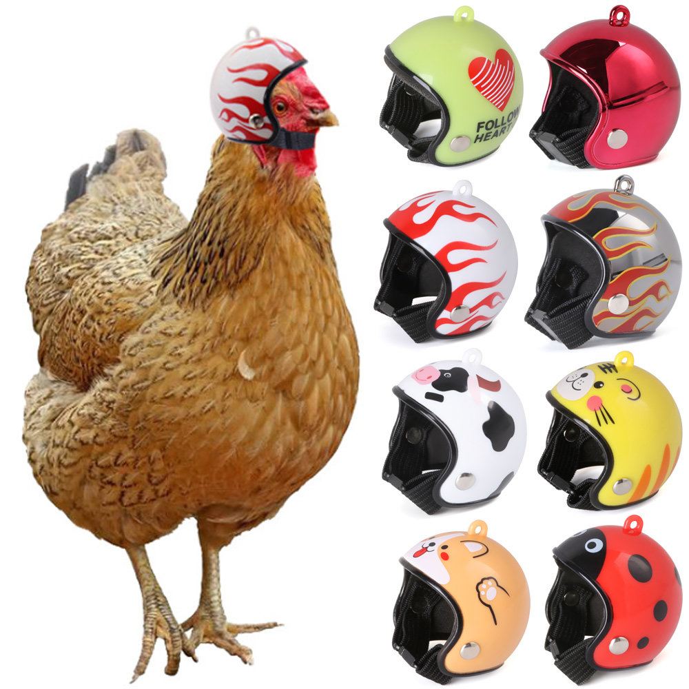 Tampa do capacete de galinha pet engrenagem protetora sol chuva proteção capacete brinquedo aves galinhas pequeno animal estimação suprimentos trajes acessórios