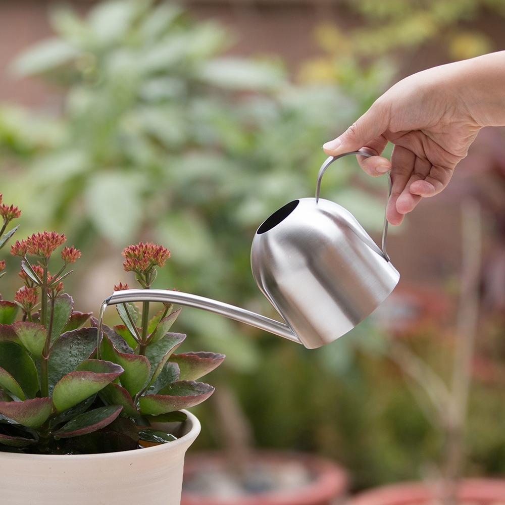 Stainless Steel Household Sprinkling Pot 500mL Gardening Tools Long Mouth Plant Watering Can Flowers Garden Accessories|Water Cans| |  - title=
