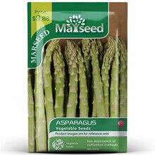 American Heirloom MARSEED Asparagus Vegetables Seedsplants Seedling Garden Outdoor