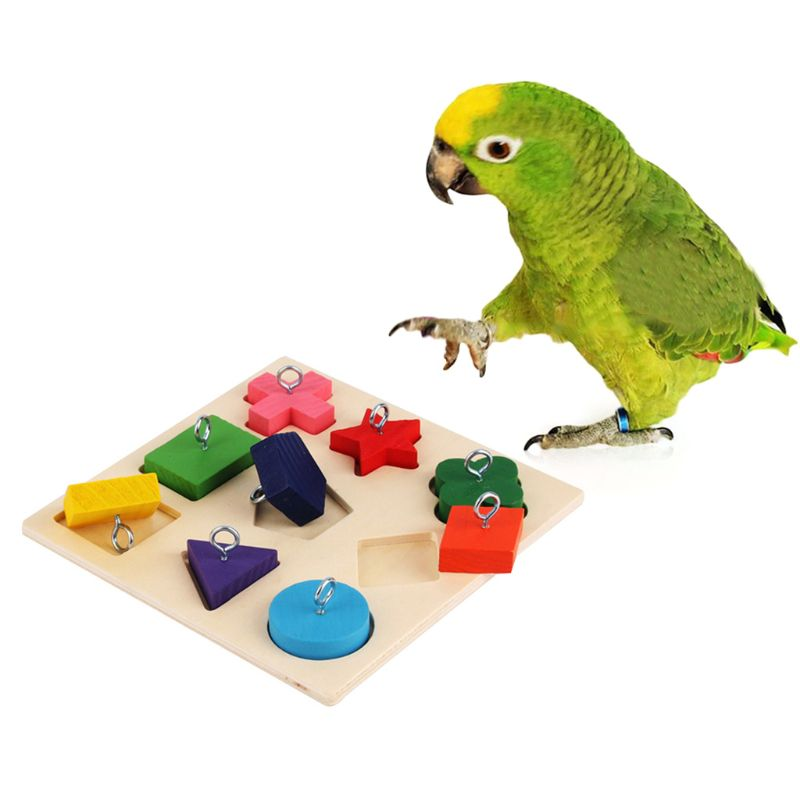 Pet Educational Toys Birds Parrot Interactive Training Colorful Wooden Block Toy Bird Supplies C42