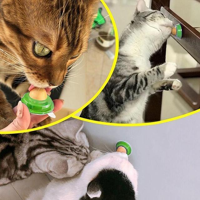 "Kitten Catnip Lick . "" Your Kitten Will Love Them"" 3"