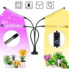 Shopled led crescer luz usb phyto lâmpada 35w 65 85 espectro completo planta luz plantas de interior mudas flor fitoamp crescer caixa
