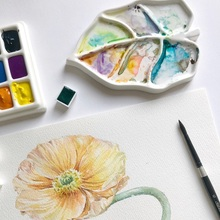 Watercolor-Palette Painting-Tools Artist Leaf-Shaped Easy-To-Clean