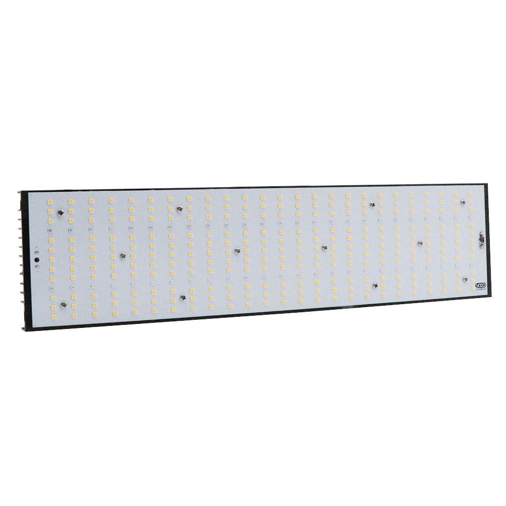 lowest price LED Strip Light RGB 5050 SMD 2835 Flexible Ribbon fita led light strip RGB 5M 10M Bluetooth Remote Controller DC12V Led Decorate