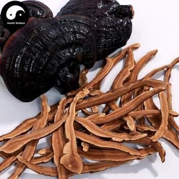 Hongo Reishi rebanadas de Ganoderma Lucidum púrpura Ling Zhi Pian