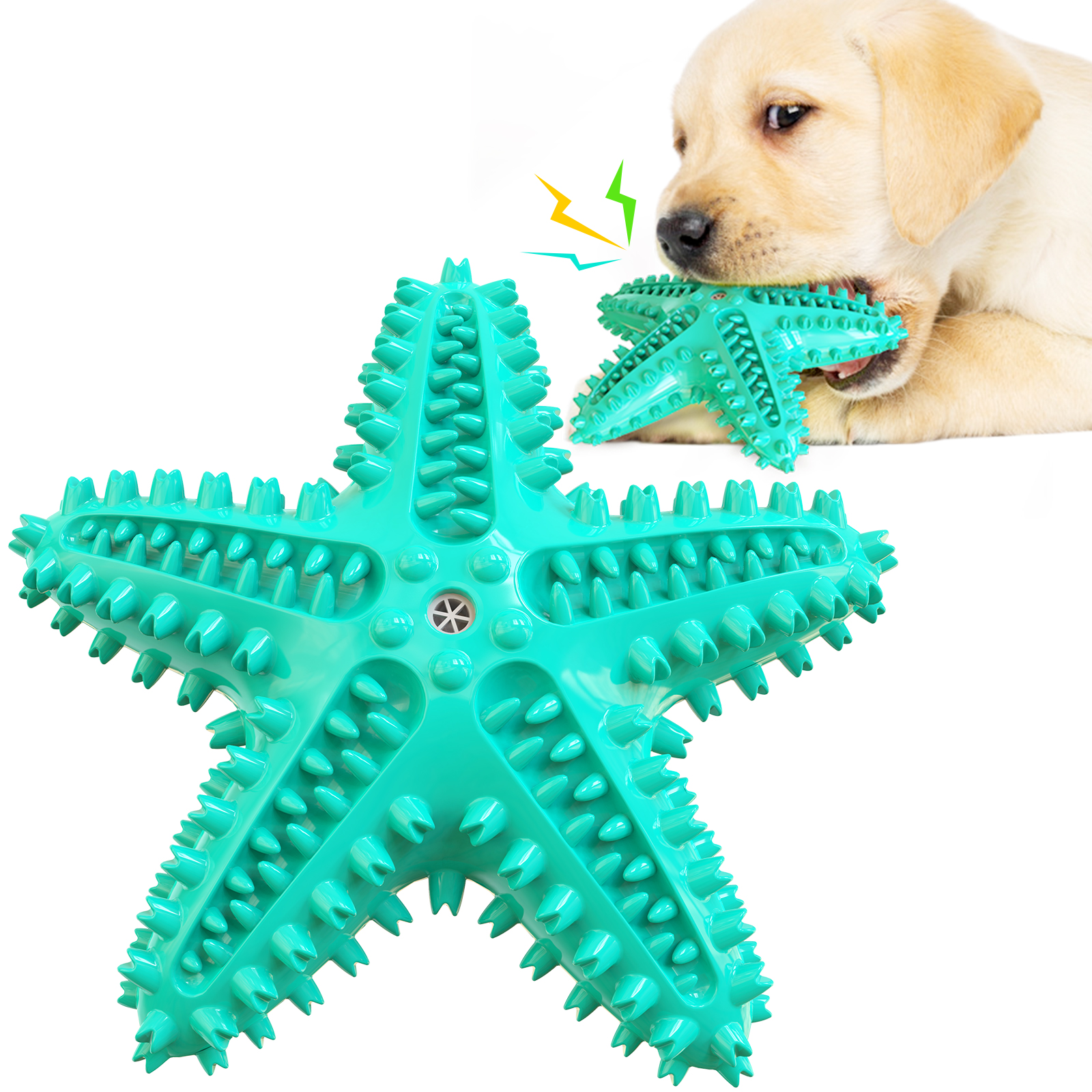 Starfish Shape Dog Squeaky Toy Dog Teether Dog Toothbrush Water Floating Toys For Dog Molar Dog Supplier img3