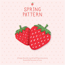 Strawberry series fashion embroidery hot cloth stickers down jacket diy wild patch plant flower patch stickers