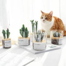 Szklany mały wazon Nordic Jar nowoczesny Design biurko donica na rośliny minimalistyczny wazon kaktus estetyczne Dekoracje Do Domu Home Decor DE50HP