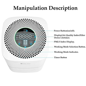 Image 5 - RIGOGLIOSO air cleaner TURE HEPA air purifier 4speed adjustment eco purificateur air hepa screen display air filter high quality