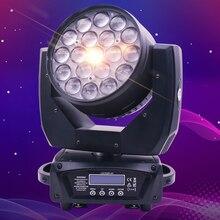 Cabeça de controle profissional do círculo do feixe do zumbido da máquina dmx512 da fase do dj/lavagem conduzida do feixe barra conduzida 19x15w rgbw/luz conduzida do zumbido
