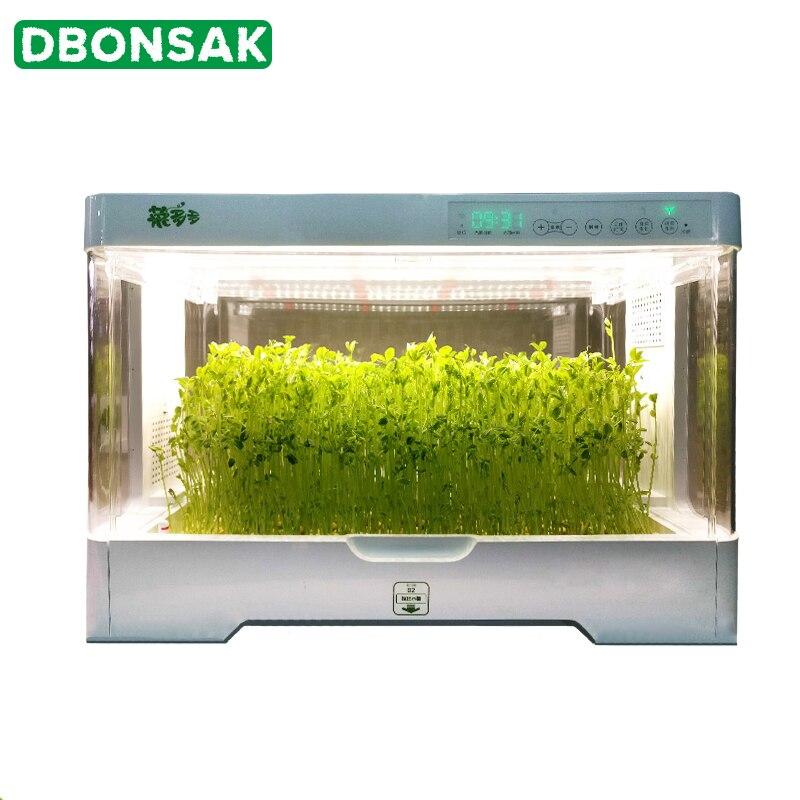 Boîte de plantation de légumes hydroponique intelligente approvisionnement en oxygène équipement de culture hors sol famille plantation Pot de fleur absorbant