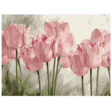 DIY Painting Acrylic Paint By Numbers Painting Kit Home Wall Living Room Bedroom Decoration Pink Tulips