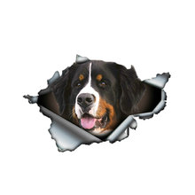 Забавные Бернские горные собаки рваные металлические автомобильные