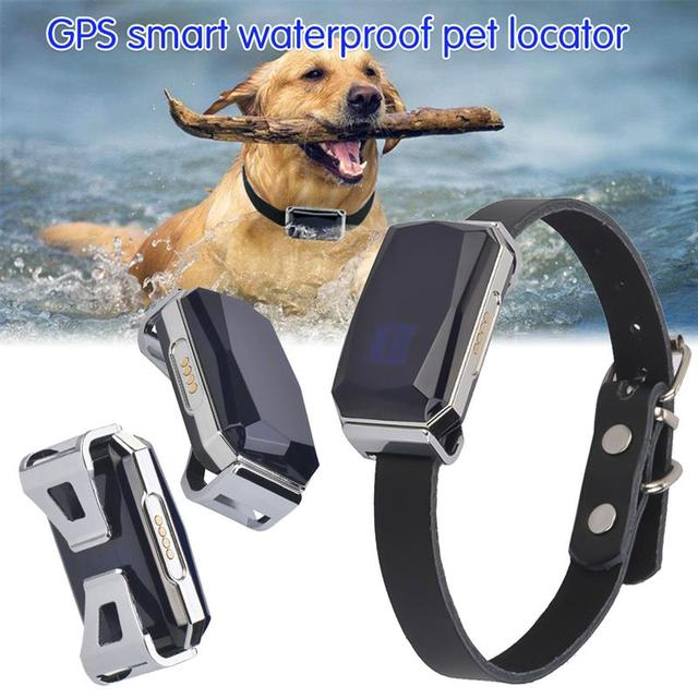 G12 GPS Smart Waterproof Universal Collar For Cats & Dogs  2