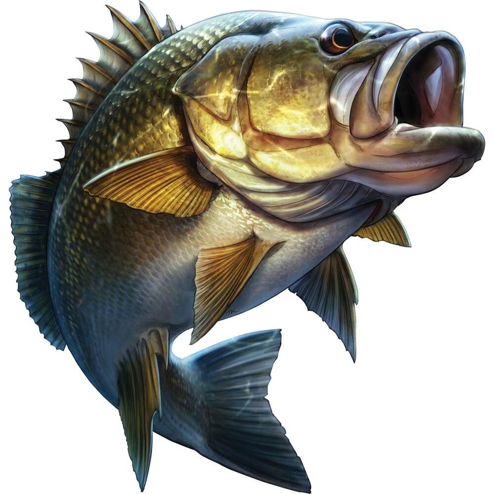 Fishing 20cm*20cm Cartoon Car Styling Large Mouth Bass Fish Stickers Boat Kayak Decals Car Truck Laptop window Car Sticker