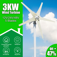 3000W 5 Blades Free Energy Windmill 12V 24V 48V Wind Power Small Wind Turbine Generator MPPT Controller For Home use 1