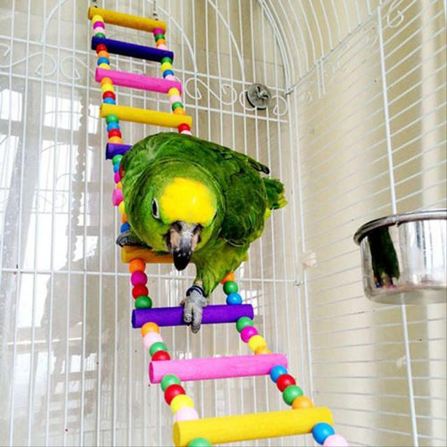 Colorful Parrot Ladder Wood Toys with Hanging Rope Parrot  1