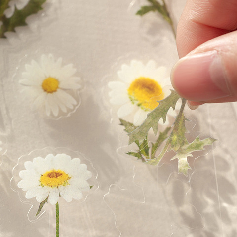 decoracao adesivos adesivo etiqueta clara para diy