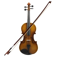 4/4 Full Size Acoustic Violin Fiddle Wood With Case Bow Rosin Violin