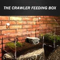 1 Pc Acrylic Transparent Terrarium Reptiles Living Box Reptile Terrarium Ideal Habitat for Scorpion spider Ants Chameleon Lizard
