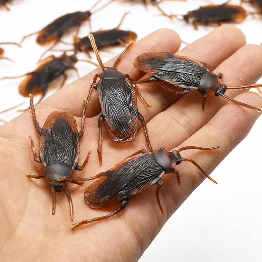 12Pcs Funny Fake Plastic Simulation Cockroach Bug Fly Trick Toy Halloween Party Props False Cockroach Toy