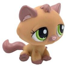 Lps gato raro animal pet shop brinquedos padrão laranja gato #1710 com olhos verdes bonito anime brinquedos para crianças