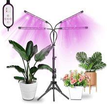 FrankEver – lampe de croissance intérieure à 4 têtes, avec trépied réglable, réglage de lheure, éclairage pour plante avec spectre de bleu rouge