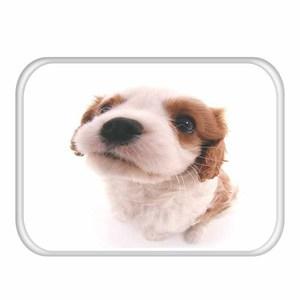 Image 5 - 1 40*60cm 귀여운 동물 패턴 미끄럼 방지 동물 플란넬 두꺼운 카펫 도어 매트 주방 미끄럼 방지 매트 야외 거실 바닥 매트