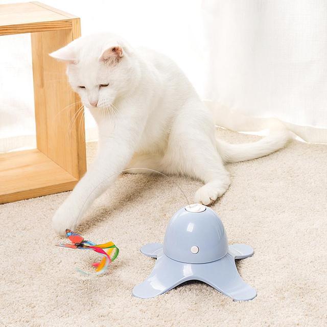 Fluorescent Butterfly Kitten Toys Non Stop Fun!  1
