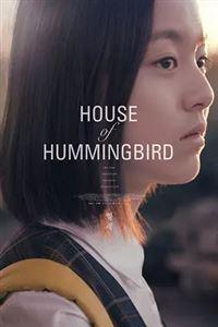 蜂鸟[HD]
