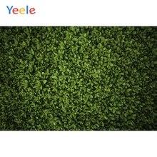 Yeele Gras Groen Scherm Gebladerte Party Decor Fotografie Achtergronden Aangepaste Fotografische Achtergronden Voor Foto Studio