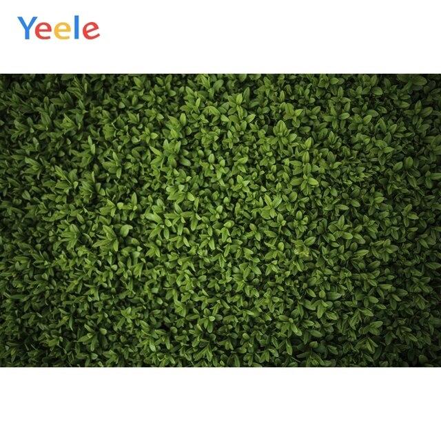 Yeele 잔디 녹색 화면 단풍 파티 장식 사진 배경 사진 스튜디오에 대한 사용자 지정 사진 배경