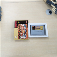 Super Street Game Fighter II 2 - EUR Version Action Game Card with Retail Box image