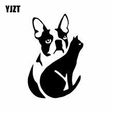 Boston Terrier Car-Sticker Vinyl Decal Black/silver Animal YJZT with Cat Nice Silhouette