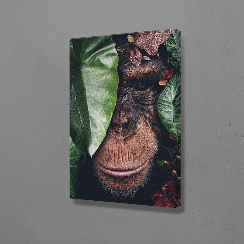 Chimpanzee anima Canvas Wall Art Decoration poster prints for living room Home bedroom decor Painting