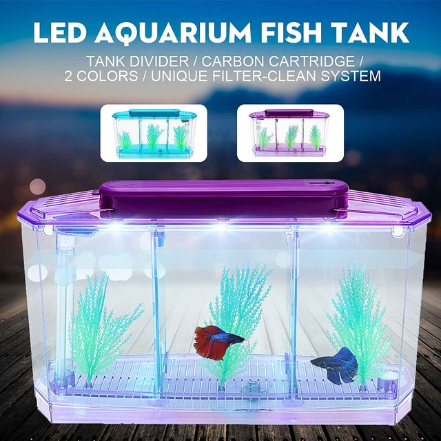 LED Betta Aquarium Tank