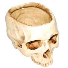 Resina Crânio Humano Modelo de Recipiente de Armazenamento Prato de Frutas Vaso de Flores Plantador de Vaso de Flores Brilhante Crânio Pote de Decoração Para Casa Artesanato