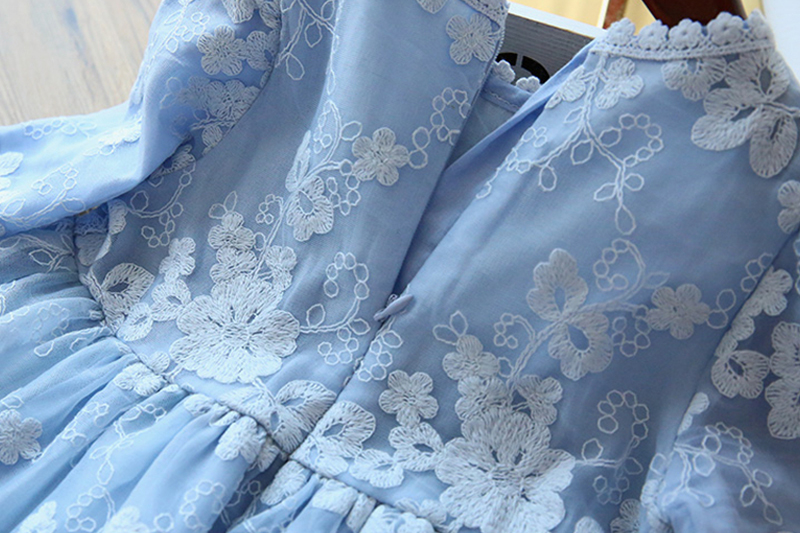 Winter Autumn Girl Lace Embroidery Long Sleeve Dress Children Wedding Birthday Party Vestidos Kids Holiday Casual Wear Clothing 4