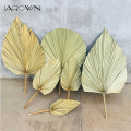 JAROWN ладони вентилятор лист сушенный цветочный пальмовых листьев окна Приём вечерние художественное настенное изделие украшение свадебная...