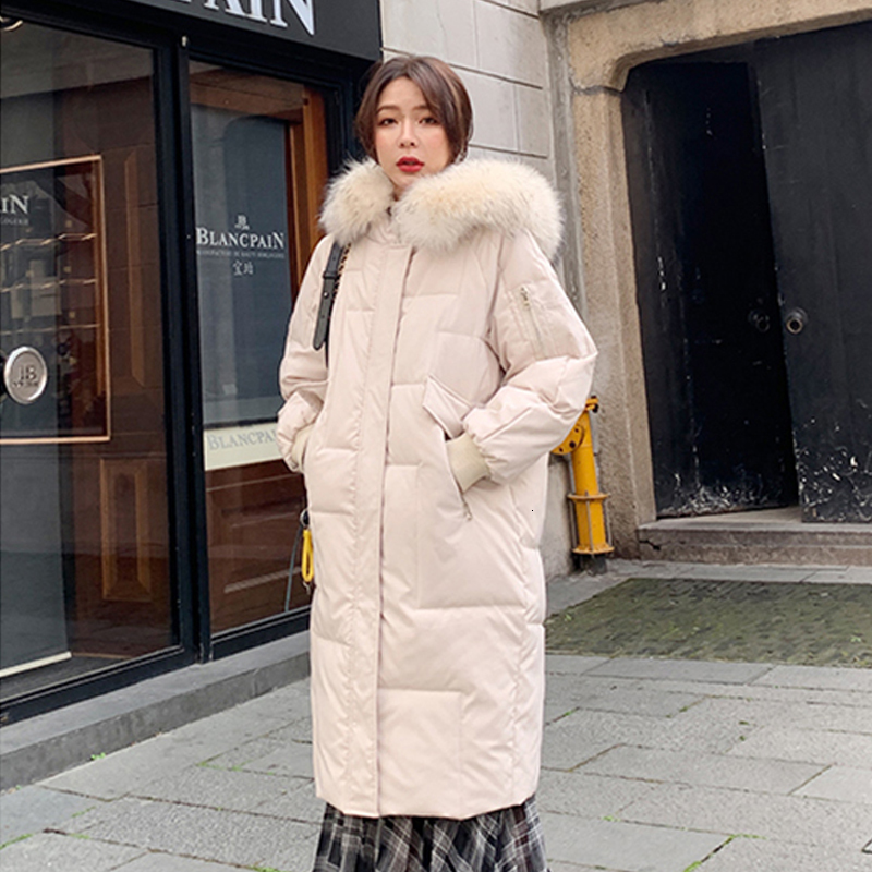 Winter Women Jas 2019 Female   Parka   New Collection Long Cats Jas Oversized Capuchon Bontkraag Coated Fat New Design Pocket