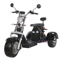 Emak/COC/EEC Electric Motorcycle Modern Design 3 Wheel Electric Scooter 2000W Citycoco For Adult EEC Standard Electro Tricycle 2