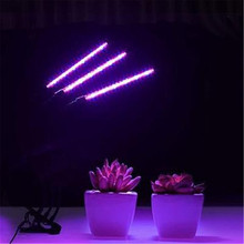 Plant Grow LED Full Spectrum Indoor Growing Tent USB Phyto Lamp Greenhouse LED Growth Light For Vegetable Flower Plant Lamp