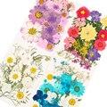Многоцелевой 3D нажатии смешанные настоящие высушенные цветы ручной работы; Цветочный узор; Туфли для УФ гель для ногтей Советы Уход за коже...
