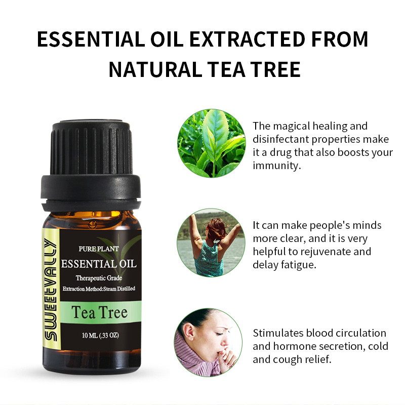 10ml Essential Oil Natural Plant Aromatherapy Relaxing Fragrance Tea Tree Essential Oils for Home Air Humidifier Freshener 4