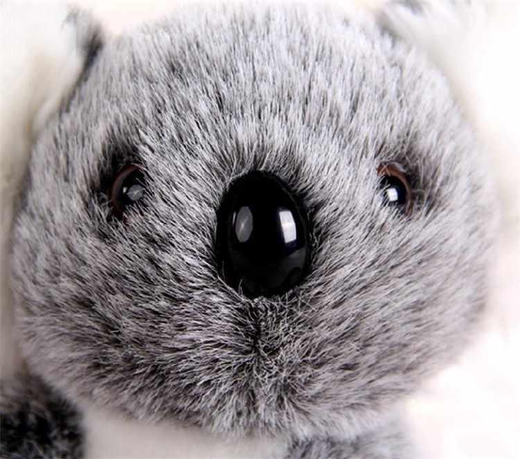 16CM nouveauté Super mignon petit Koala ours en peluche jouets aventure Koala poupée anniversaire noël cadeau PT024