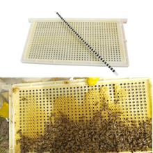 Queen Rearing System Queen Rearing And Royal Jelly Producing New No Need Shift Migratory Bee Larvae Design Beekeeping Tool 1 Set
