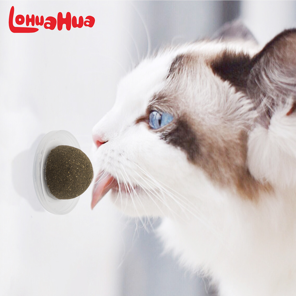 Natural Catnip Cat Toy Crazy Healthy Catmint Toys For Cats Kitten Kedi Cleaning Teeth Play Ball Cat Supplies Pet Products bioaqua exfoliante para pies