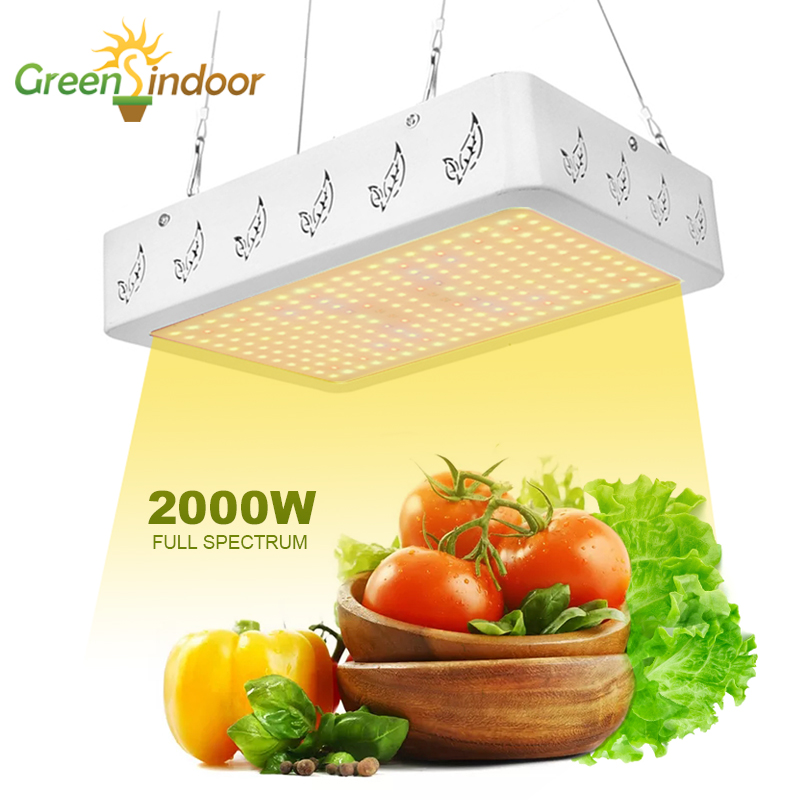 Grow Tent Phyto Lamp 1000W 2000W Full Spectrum LED Grow Light Lamp For Plants Hydroponics Fitolamp Indoor Herbs Veg And Flowers