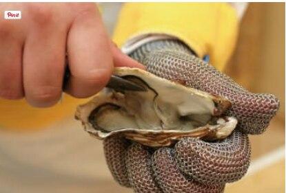 WHOLESALE! Oyster Glove Medieval Gloves Anti Knife Hand Safe
