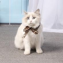 Pet bow tie cat collar cat cat dog collar scarf pet accessories dog cat accessories 30ml pet dog cat odor deodorant dog pet cat deodorant spray dog pet cat odor liquid perfume spray